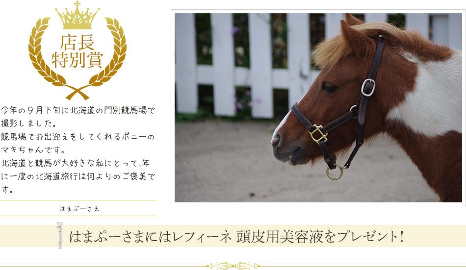 店長特別賞:今年の9月下旬に北海道の門別競馬場で撮影しました。競馬場でお出迎えをしてくれるポニーのマキちゃんです。北海道と競馬が大好きな私にとって、年に一度の北海道旅行は何よりのご褒美です。はまぷーさま
